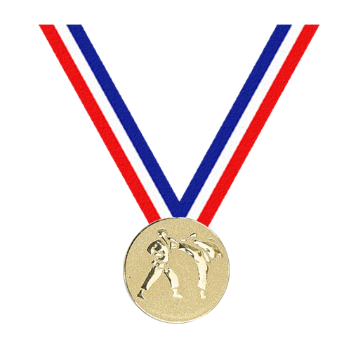 Médaille Karaté