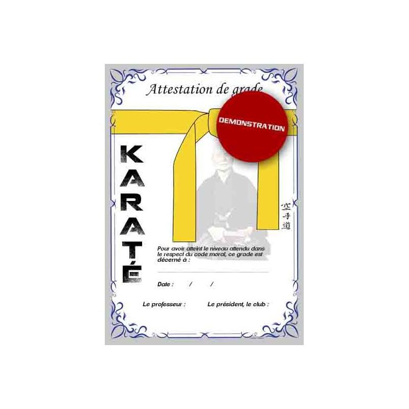 Certificación de cinturón amarillo