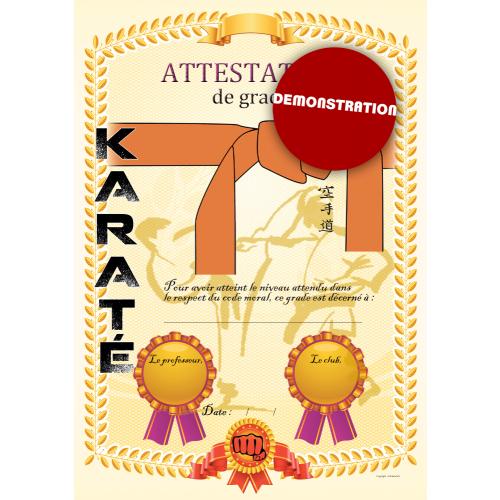 Certificato cintura arancio