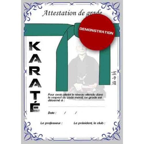 Certification green belt