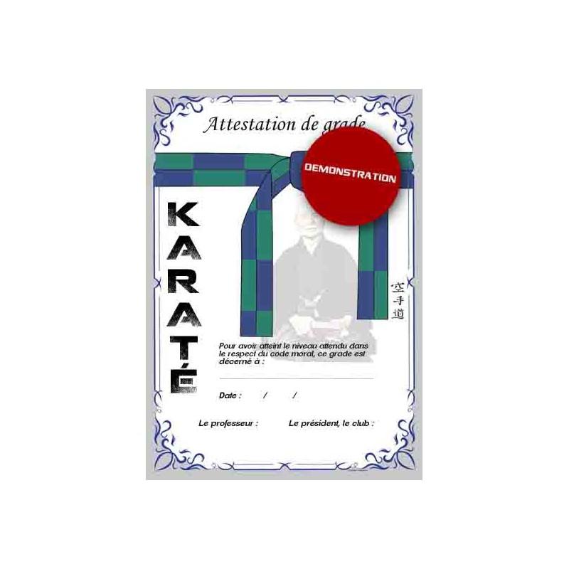 Certification green belt blue