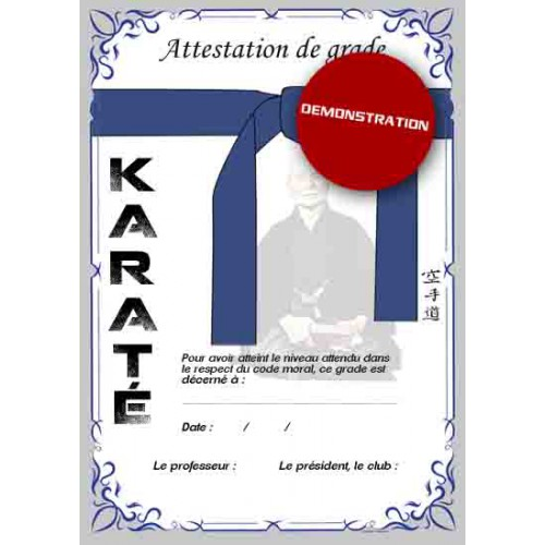 Certification blue belt